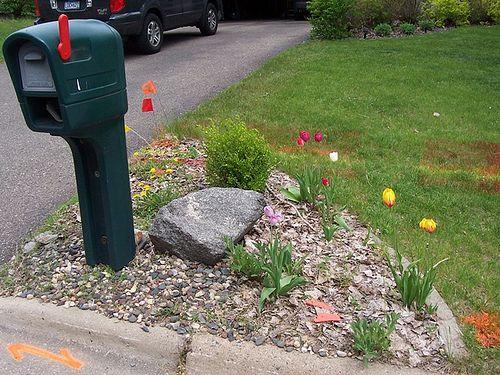 Garden Ideas Around Mailbox mailbox garden ideas | mailbox landscape before | gardening