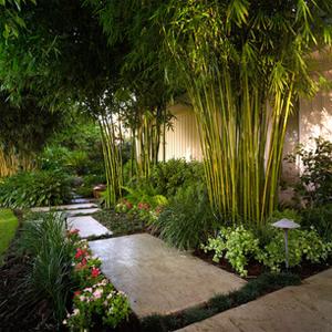 Contoh Taman Minimalis Untuk Rumah Modern Desain Taman