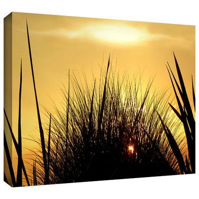 ArtWall 'Deep In July' by Dean Uhlinger Photographic Print on Wrapped Canvas Size:
