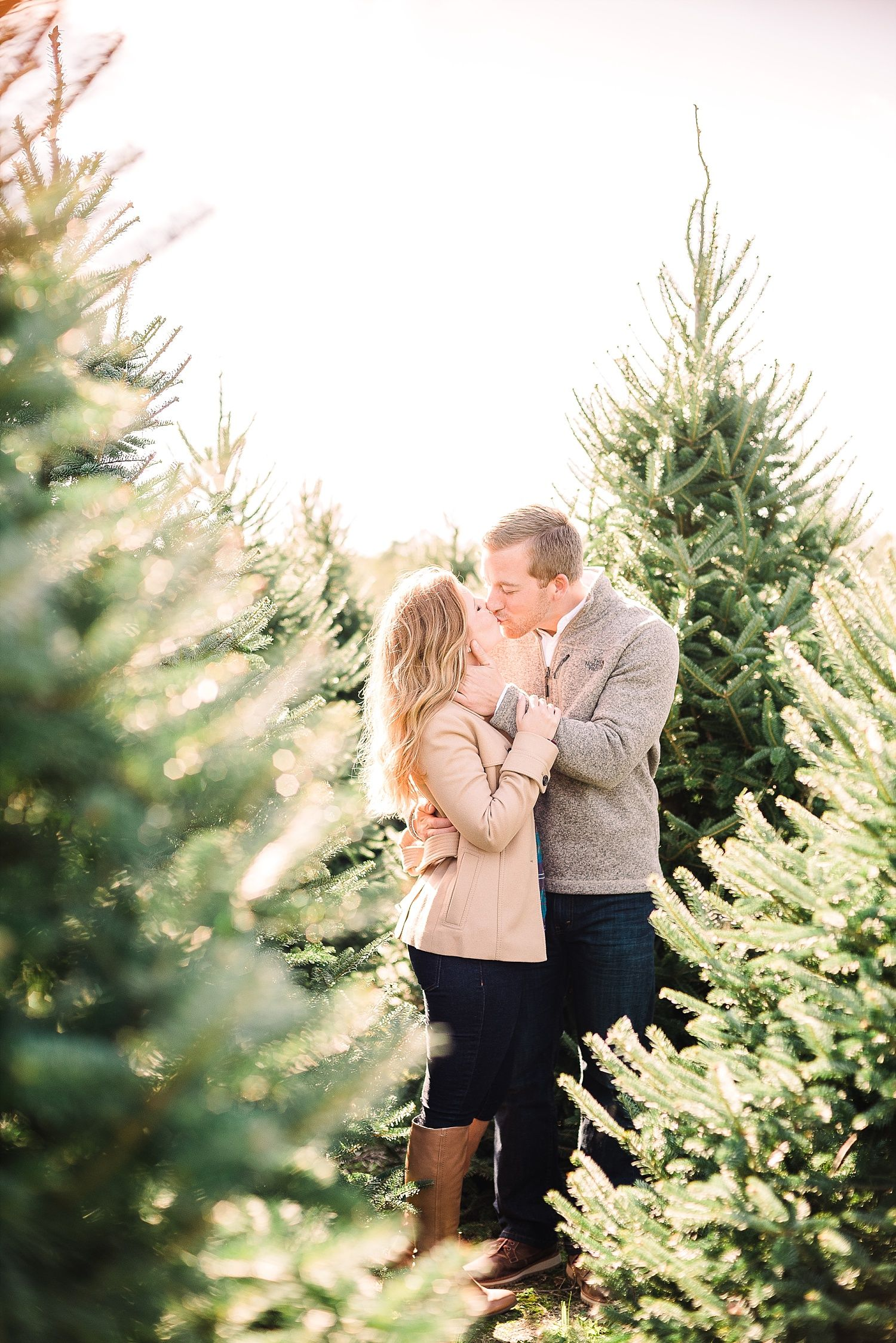Christmas Tree Farm Engagement Session In 2020 Christmas Tree Farm Photos Christmas Engagement Photos Christmas Engagement Pictures