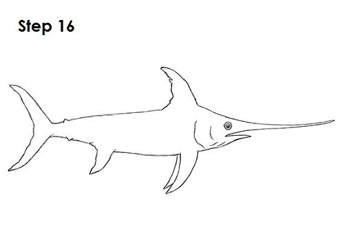 how to draw a blue marlin