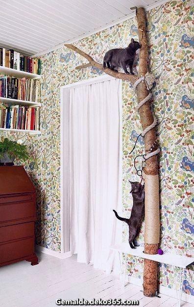 Wunderschöne Eine Katze zu nach sich ziehen, ist in Systematik, dessen ungeachtet wenn sie an... #kittycats