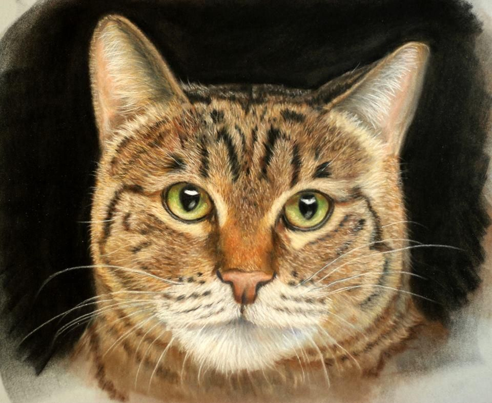 Pastel Portraits by Maurice Keohane