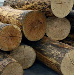 Deadwood Logs For Displays Nyc Wood Recycled Wood Reclaimed Barn Wood