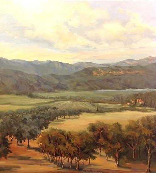 Provence Olive Grove - Oil