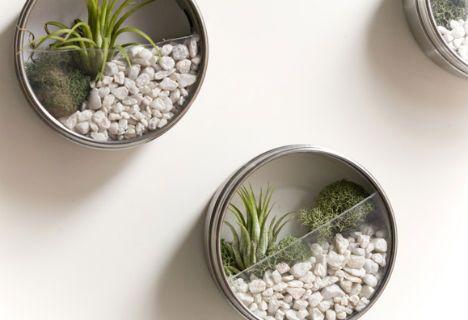 Tiny Living Worlds In Glass Terrarium Ideas Diy Terrarium - Cool diy wall planter