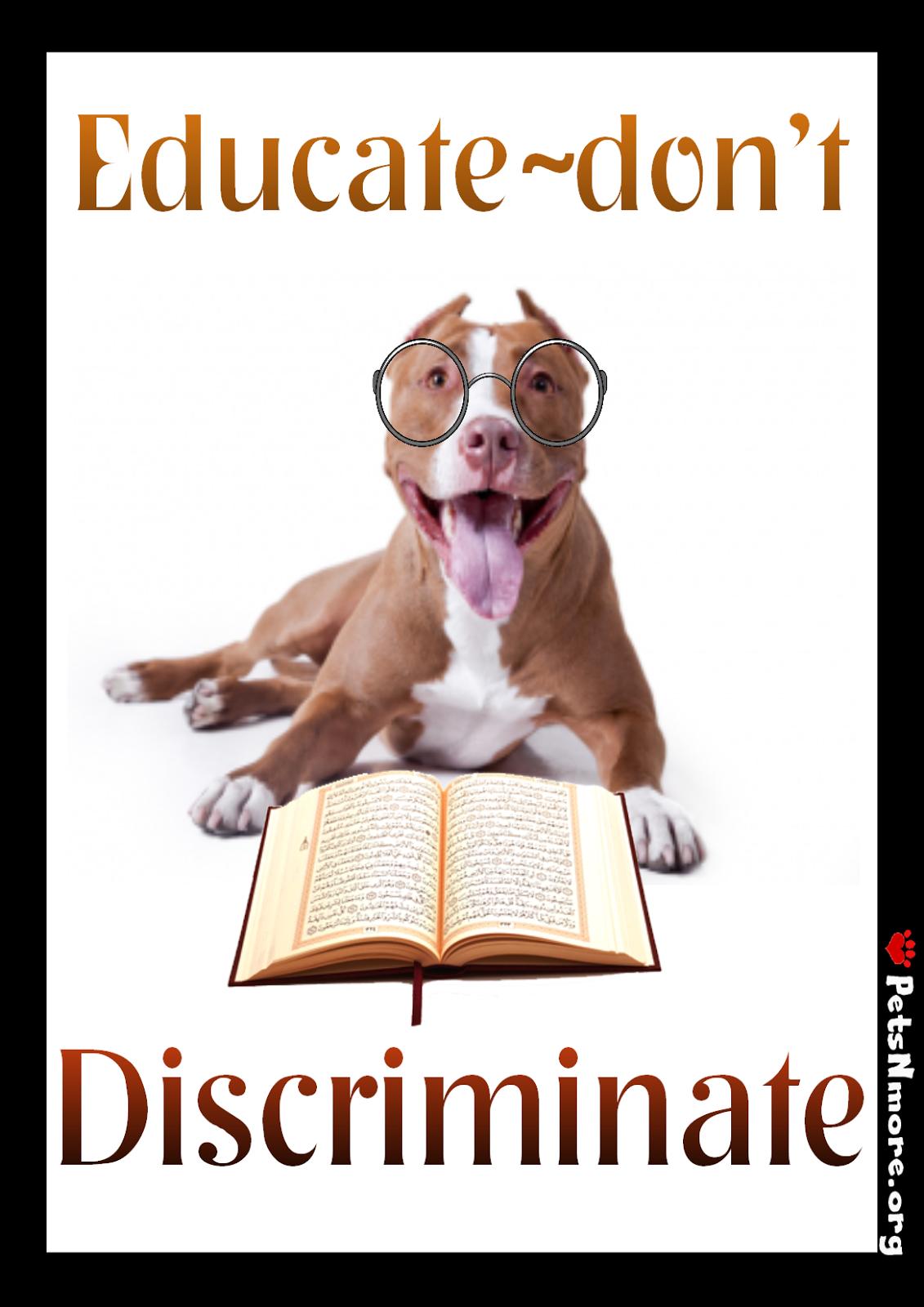 Pitbull Dog Quotes Animal Dog Cat Pet Animal Inspiring Quotes For Animal Lovers