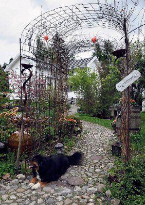 Denne hagestien er laget av åkerstein og subus. To sorter kaprifol vokser opp langs portalen av armeringsjern. Idé: Familien Bekkø/Johannessen, Oppland. Foto: Per Zhang Skjønberg, OA/ANB