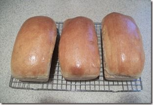 Homemade Bread--looks pretty easy, maybe I'll finally get out the Kitchen-Aid for it!!