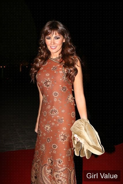 Darine Hamze in Brown Dress