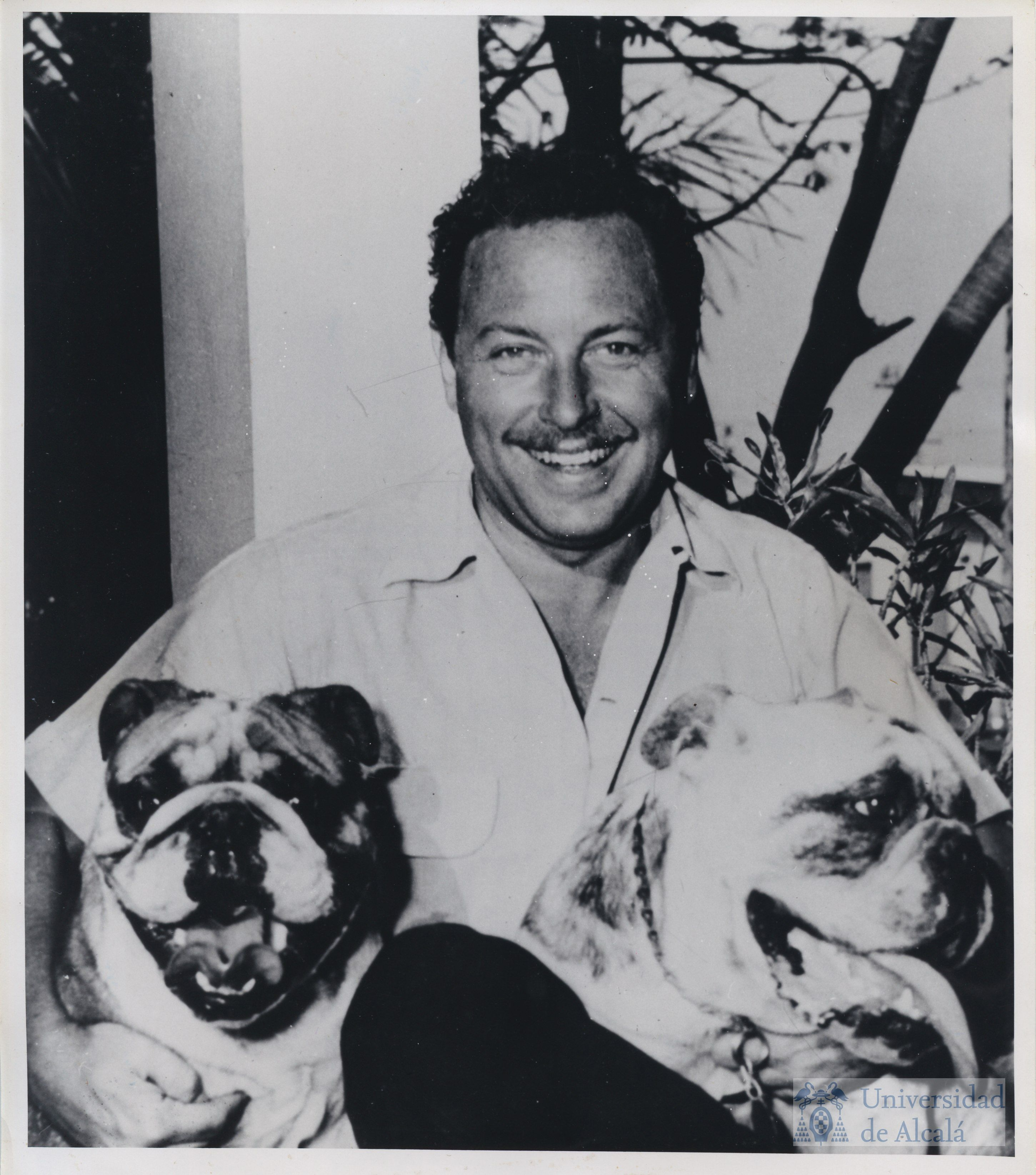 Tennessee Williams- The Glass Menagerie, A Streetcar Named Desire, Cat on a  Hot Tin Roof, everything as he's awesome!