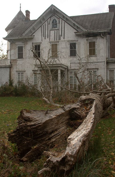 Old Farm House & Fallen Tree