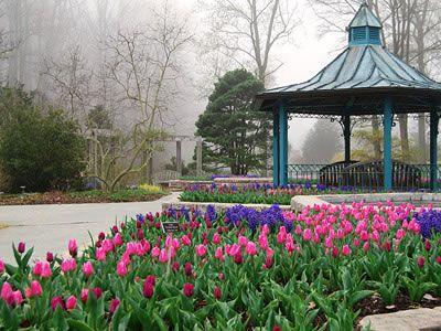 77f305a565d67f2dbb4908af6a4c938d - Brookside Gardens Conservatory Wheaton Md 20902