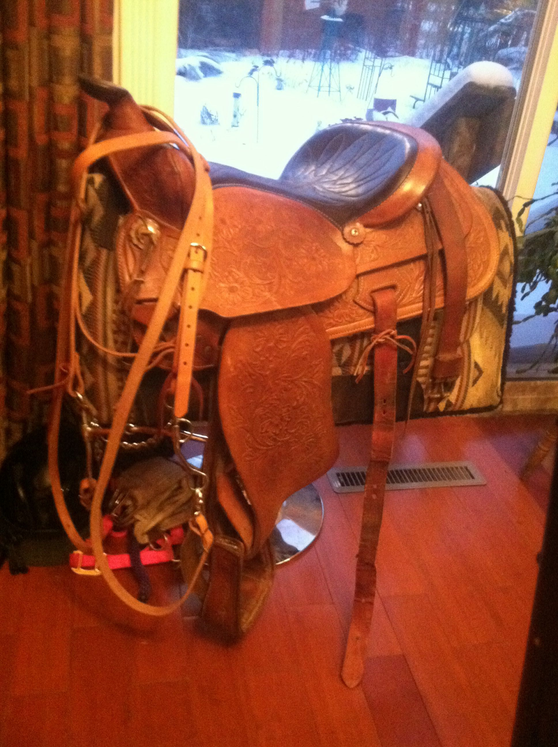 My new saddle and bridle