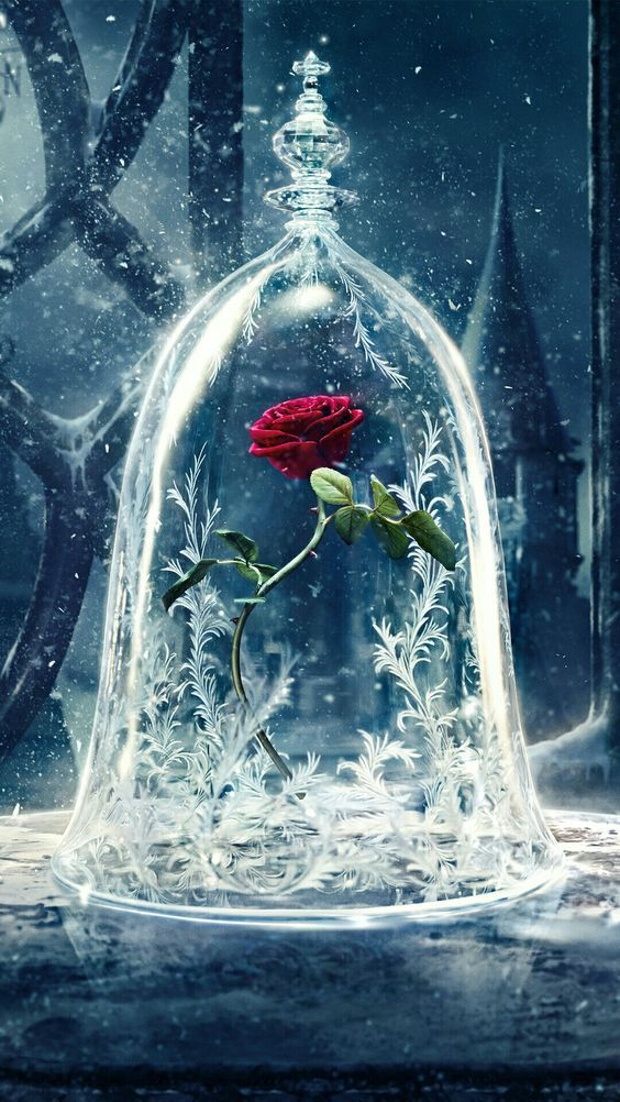 Disney Beauty And The Beast And Rose Image Beast Wallpaper Beauty And The Beast Wallpaper Disney Beast