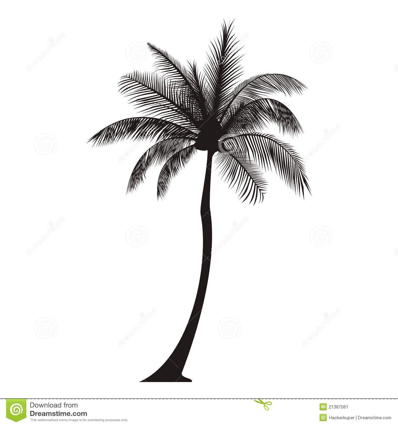 California Palm Tree Palm Tree Silhouette Stock Image