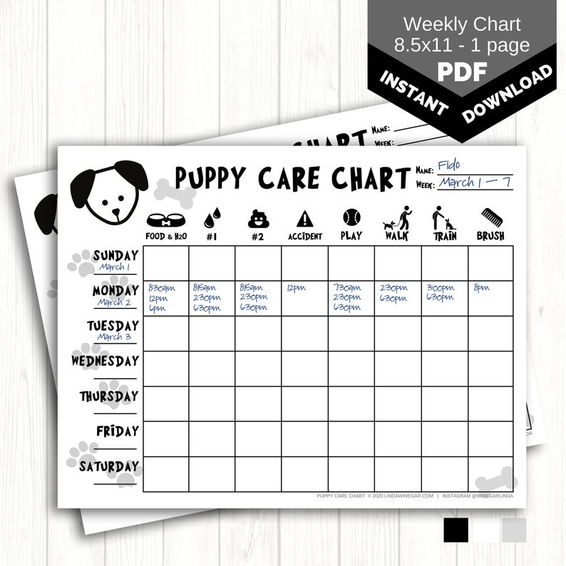 Puppy Care Chart PRINTABLE Dog Chore Chart for Kids
