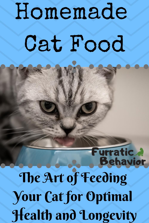 Diy Homemade Cat Food In 2020 Healthy Cat Food Homemade Cat Food Cat Food