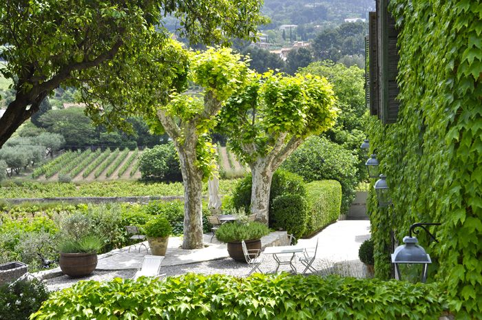 Chambre D Hotes A Cassis Maison D Hotes De Charme Et De Prestige Avec Piscine Maison D Hotes Jardin Mediterraneen Jardin Exterieur
