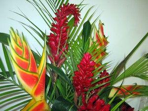 Bouquet de fleurs exotiques