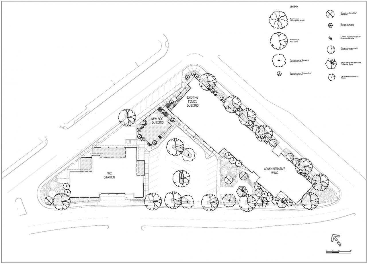 Architecture Drawing Of Trees landscape architecture plan drawings | landscape design with a