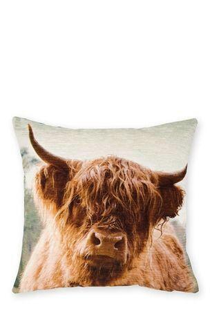 next highland cow cushion applique cushions on sofa cushions rh pinterest com