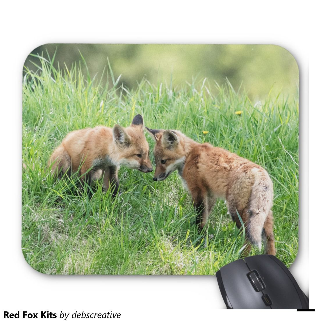 Red Fox Kits Mouse Pad