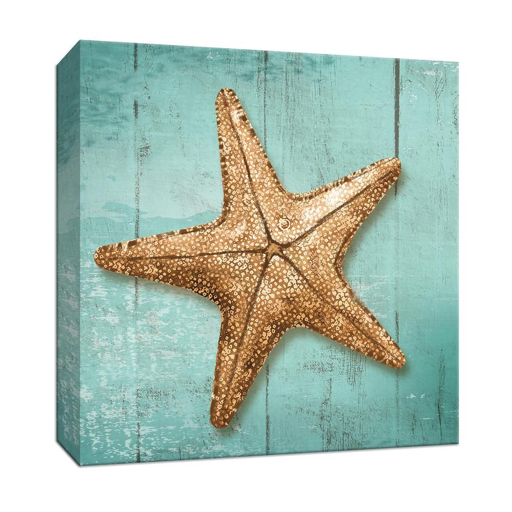 Ptm Images 15 In X 15 In Starfish By Canvas Wall Art 9 164843 The Home Depot Starfish Wall Art Starfish Art Starfish Painting