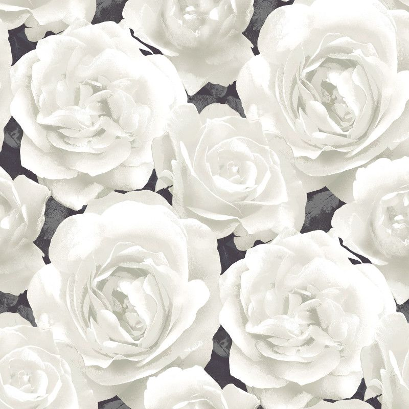 Undefined White Rose Wallpaper 54 Wallpapers
