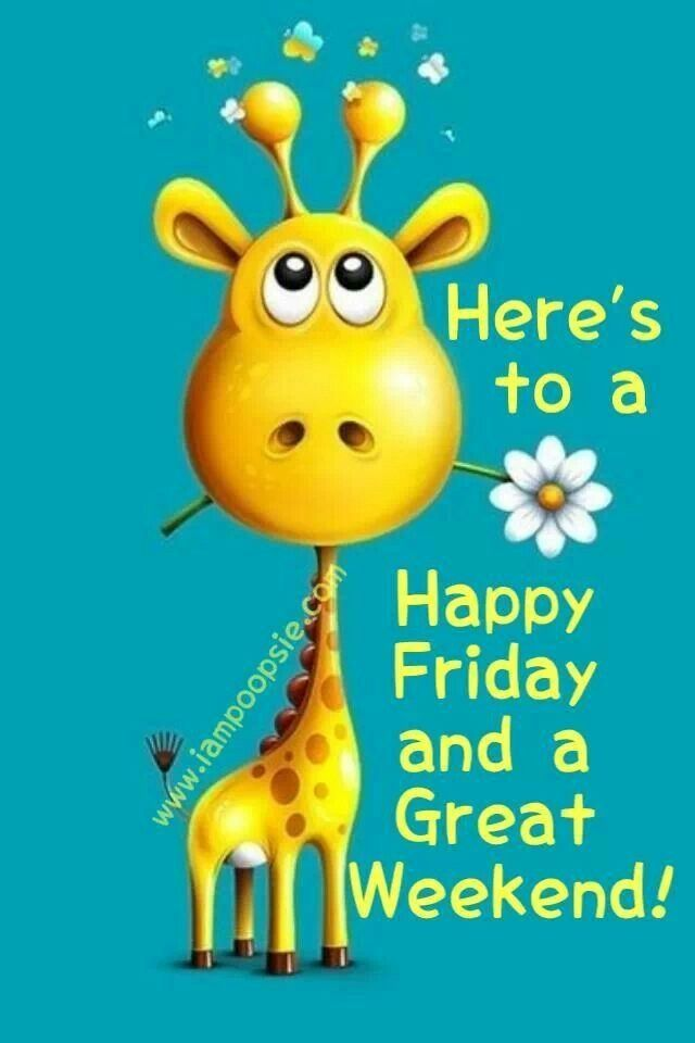 Heres To A Happy Friday And A Great Weekend Giraffe Good