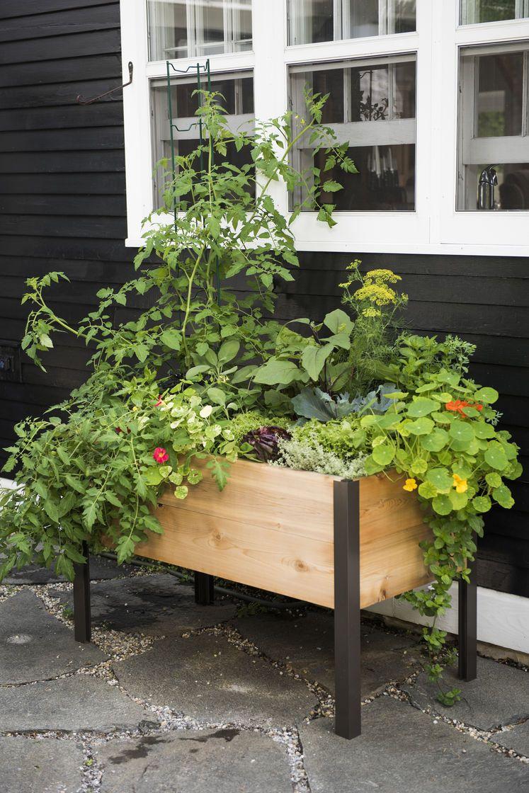 Grow Box 2 X 4 Elevated Cedar Planter Box Made In Vermont