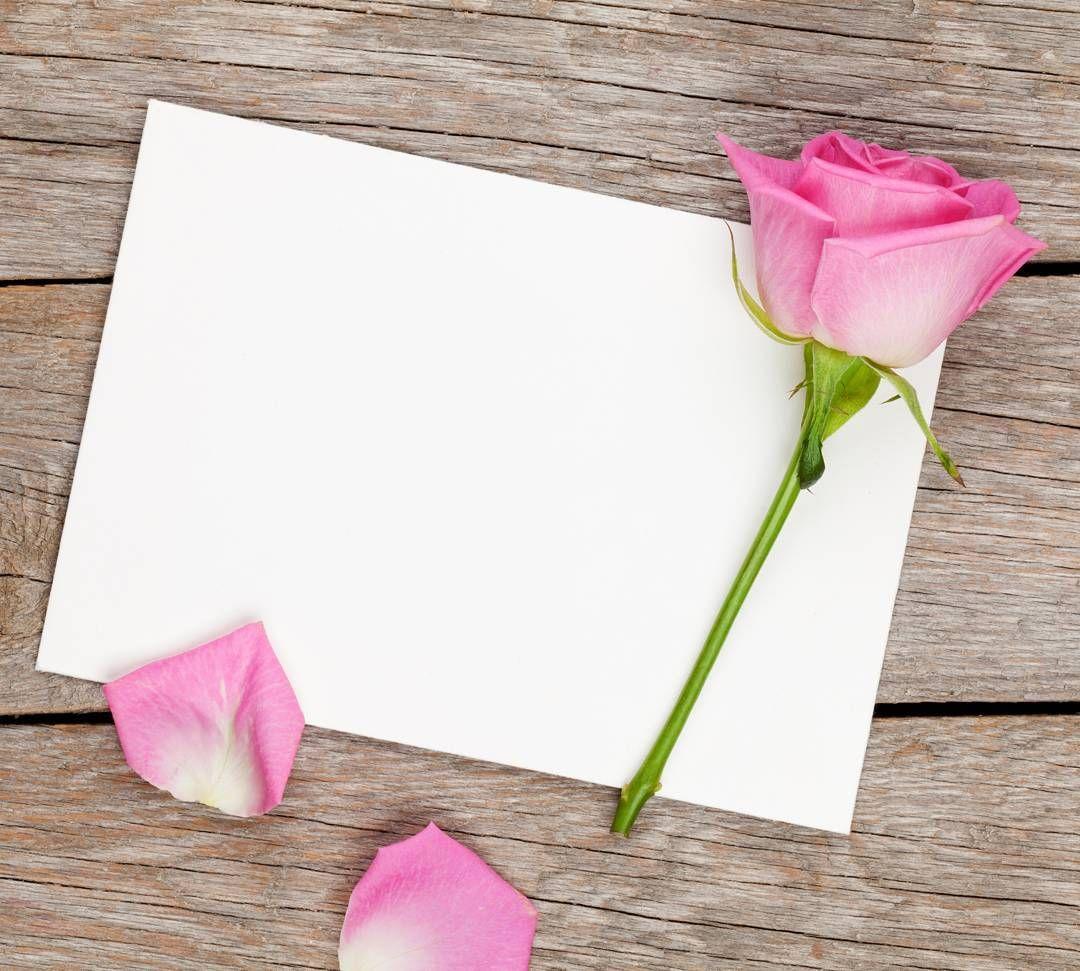 الصدق يحسن بالفتى والكذب يحسب من عيوبه رمزيات رمزيات دينية رمزيات إسلامية صور تصاميم تصميم فوتو ور Floral Border Design Flower Frame Flower Backgrounds