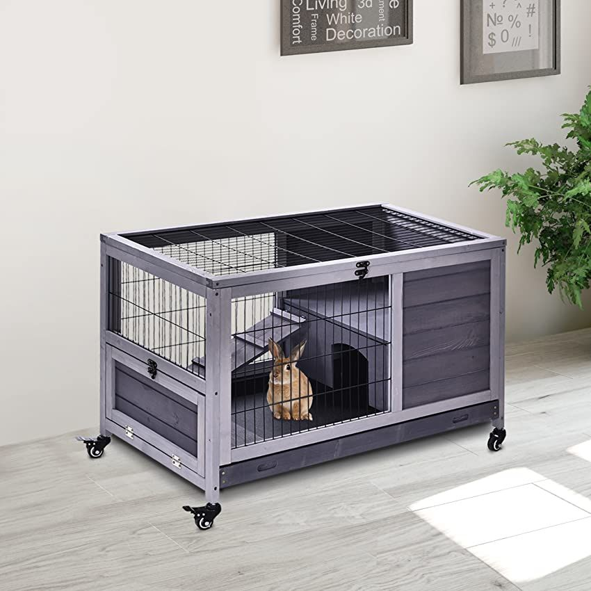 Related Posts Amazon Com In 2020 Rabbit Hutches Bunny Cages Archie Oscar