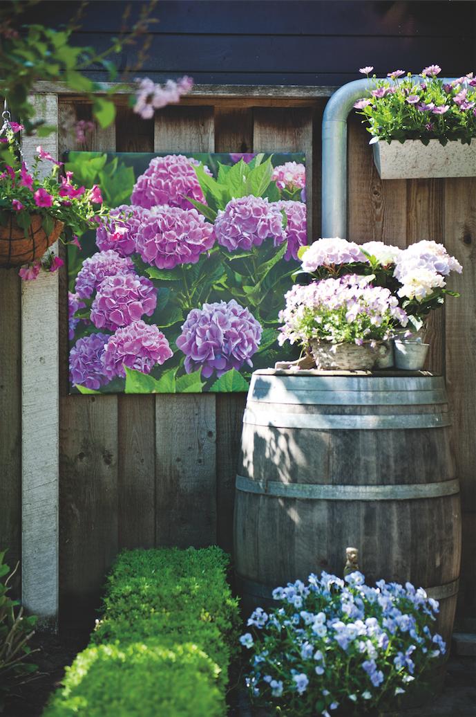 egayez la vieille cabane outils au fond de votre jardin avec un tableau ext rieur r sistant. Black Bedroom Furniture Sets. Home Design Ideas