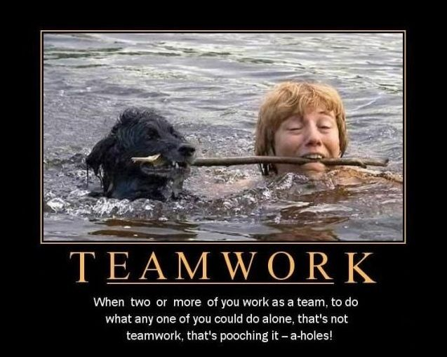 Do You Have This Skill Mondaymotivation Teamwork Teamwork Funny Work Motivational Quotes Funny Work Quotes Inspirational
