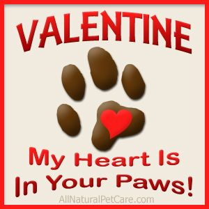 All Natural Pet Care Puppy Valentines Animal Valentine Natural