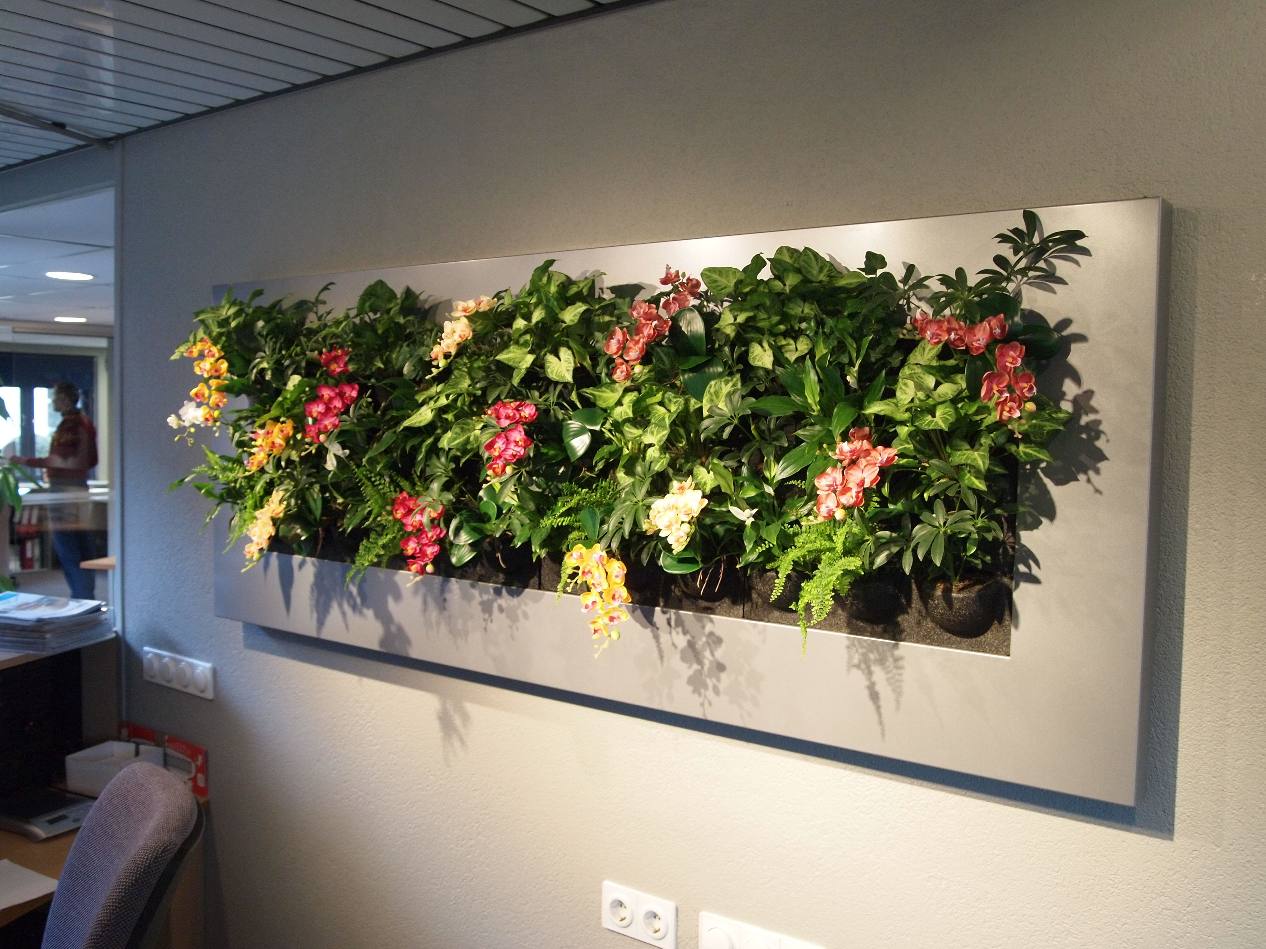 Livewall green wall system make conferences more comfortable - Great Living Picture Hung On Wall Behind Reception Desk In Office