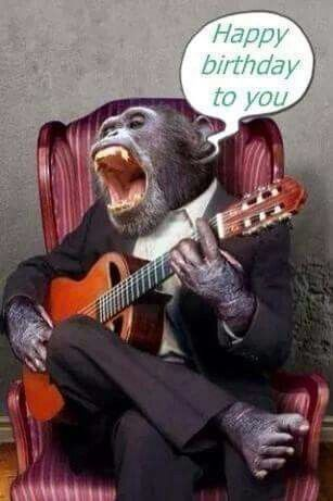 даже картинка обезьяны поют хэппи бездей старше