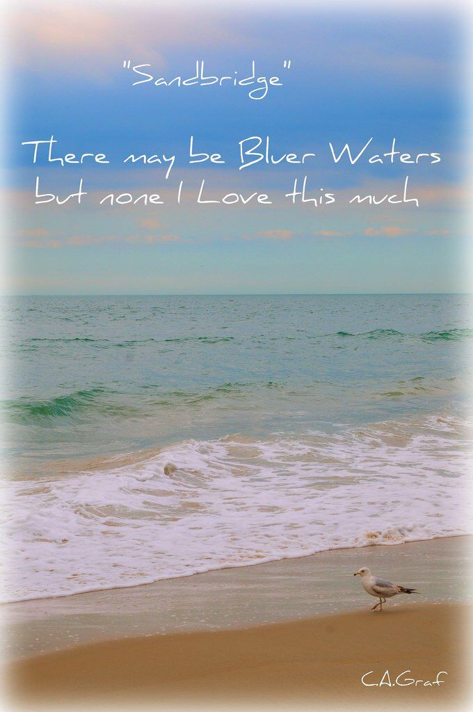 Sandbridge There May Be Bluer Waters But None I Love This Much Vabeach Siebert Bluewater Photo C Graf Realty The Beach People