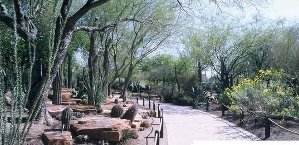 77fb097142a9c7c4da5b19c17cca7a0c - Ethel M Chocolate Factory And Botanical Cactus Gardens Las Vegas