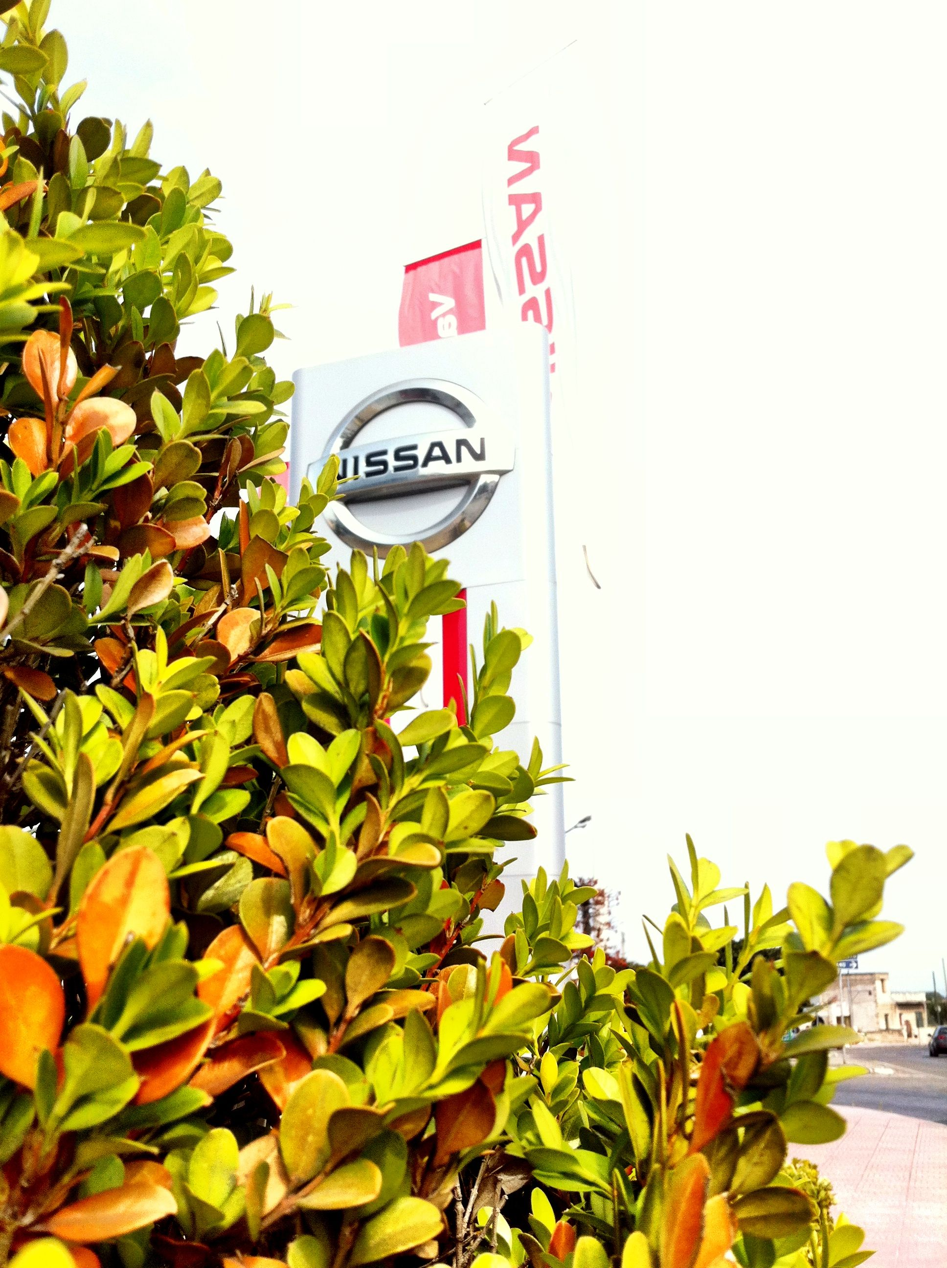 Sede Nissan  Taranto - www.daddario.it
