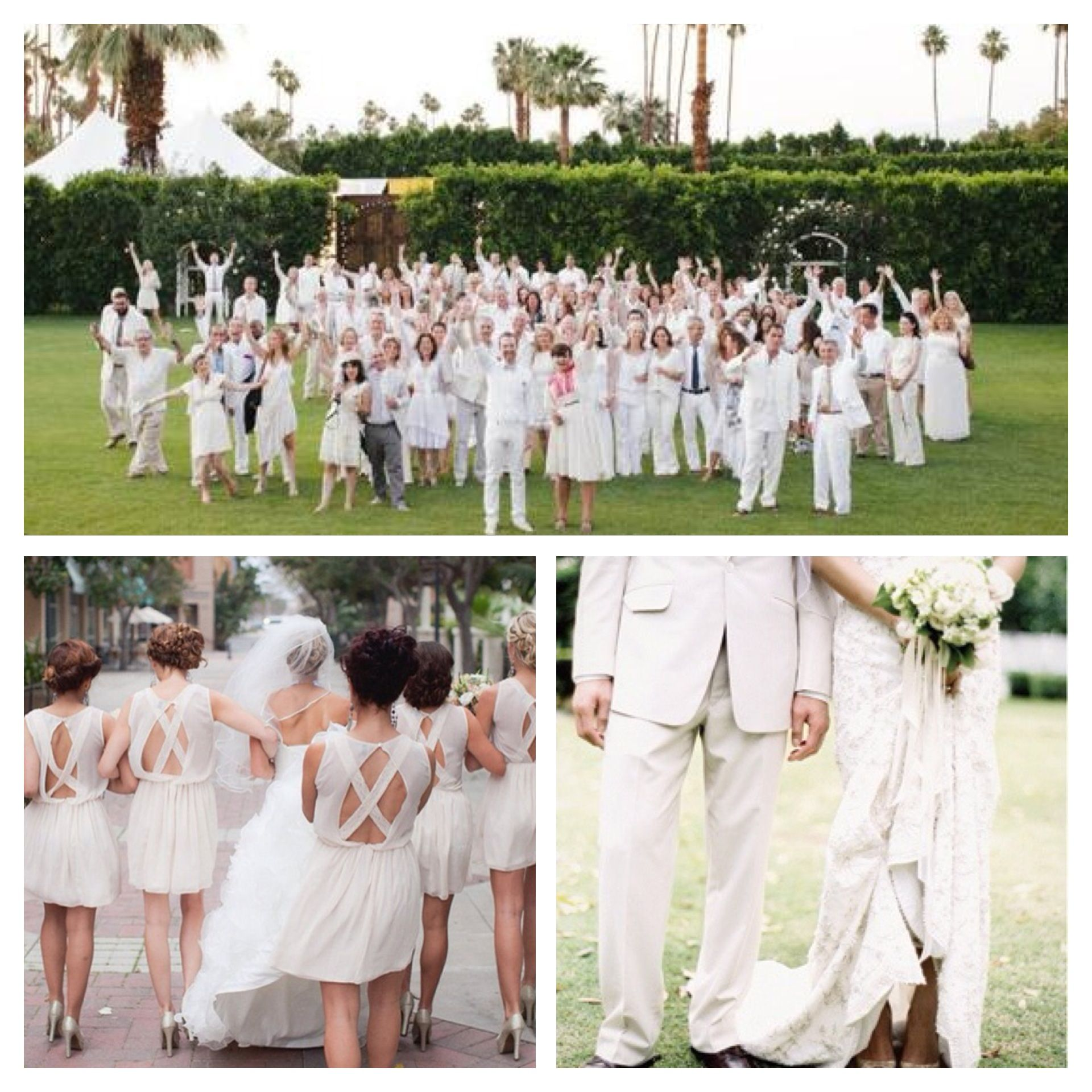 Wedding Guests All In White