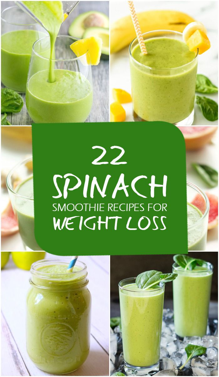 high protein low-carb weight loss diet plan