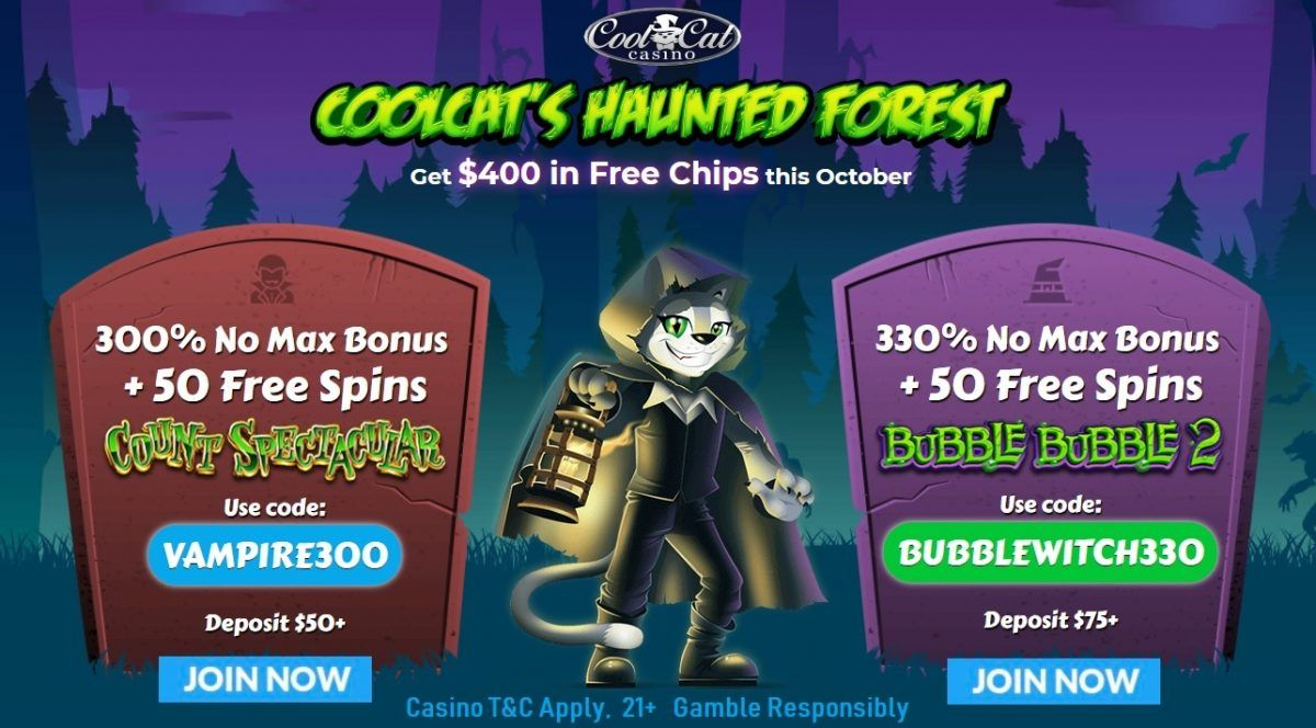 Cool Cat casino exclusive offer 350 no rules bonus
