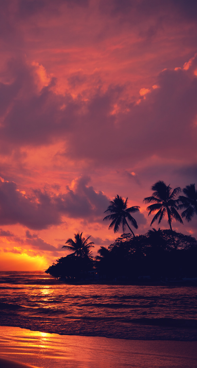 Tropical Sunset Home Screen Sunset Wallpaper Nature Pictures Beautiful Wallpapers
