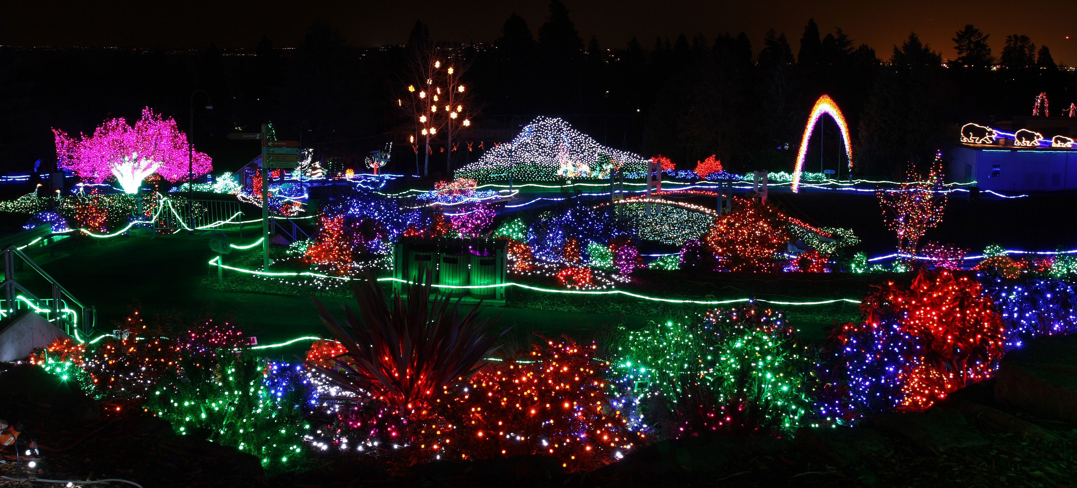 Zoo Lights Wa