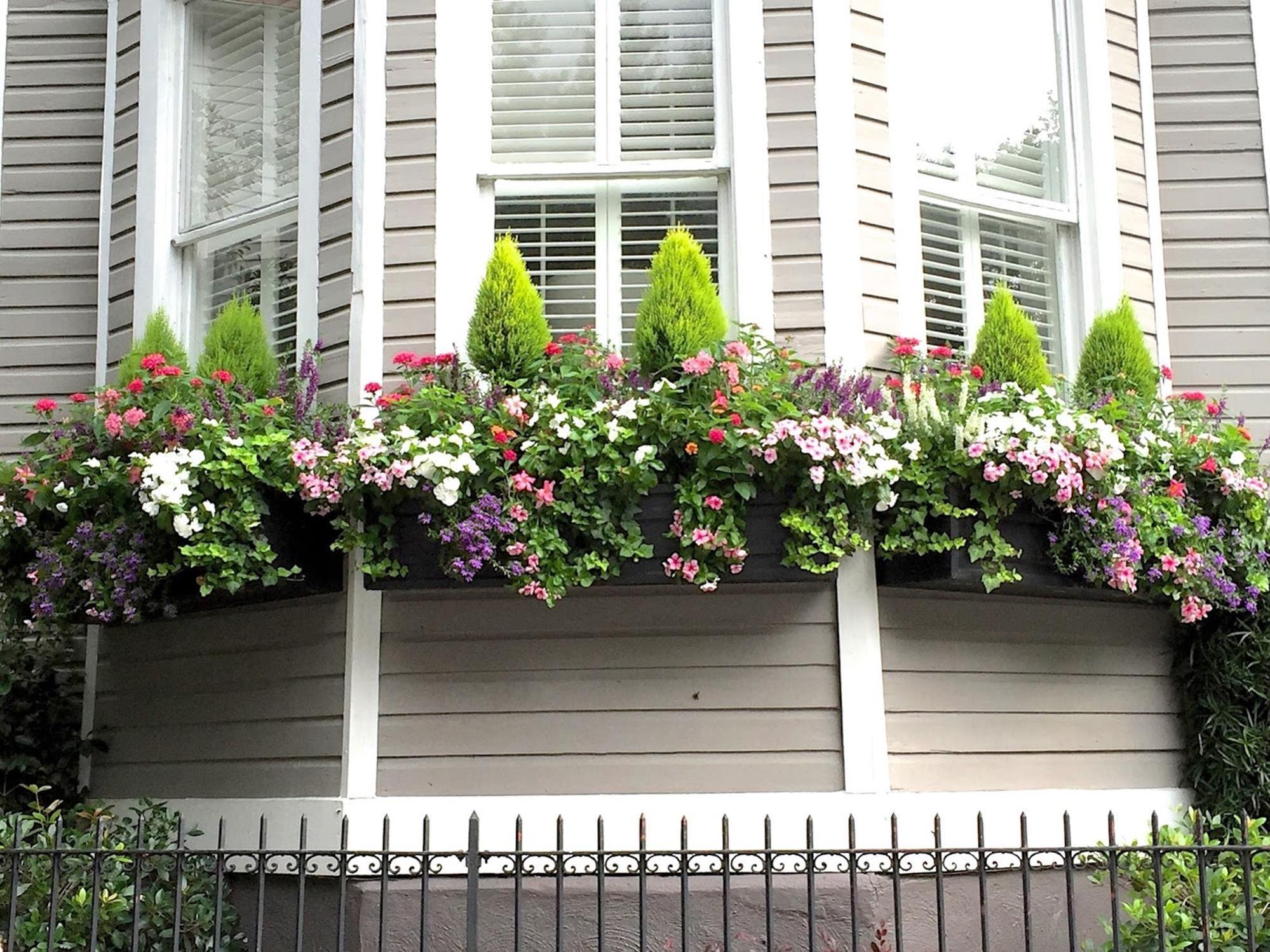 32 Beautiful Ideas Cascading Flowers For Window Boxes Window Box