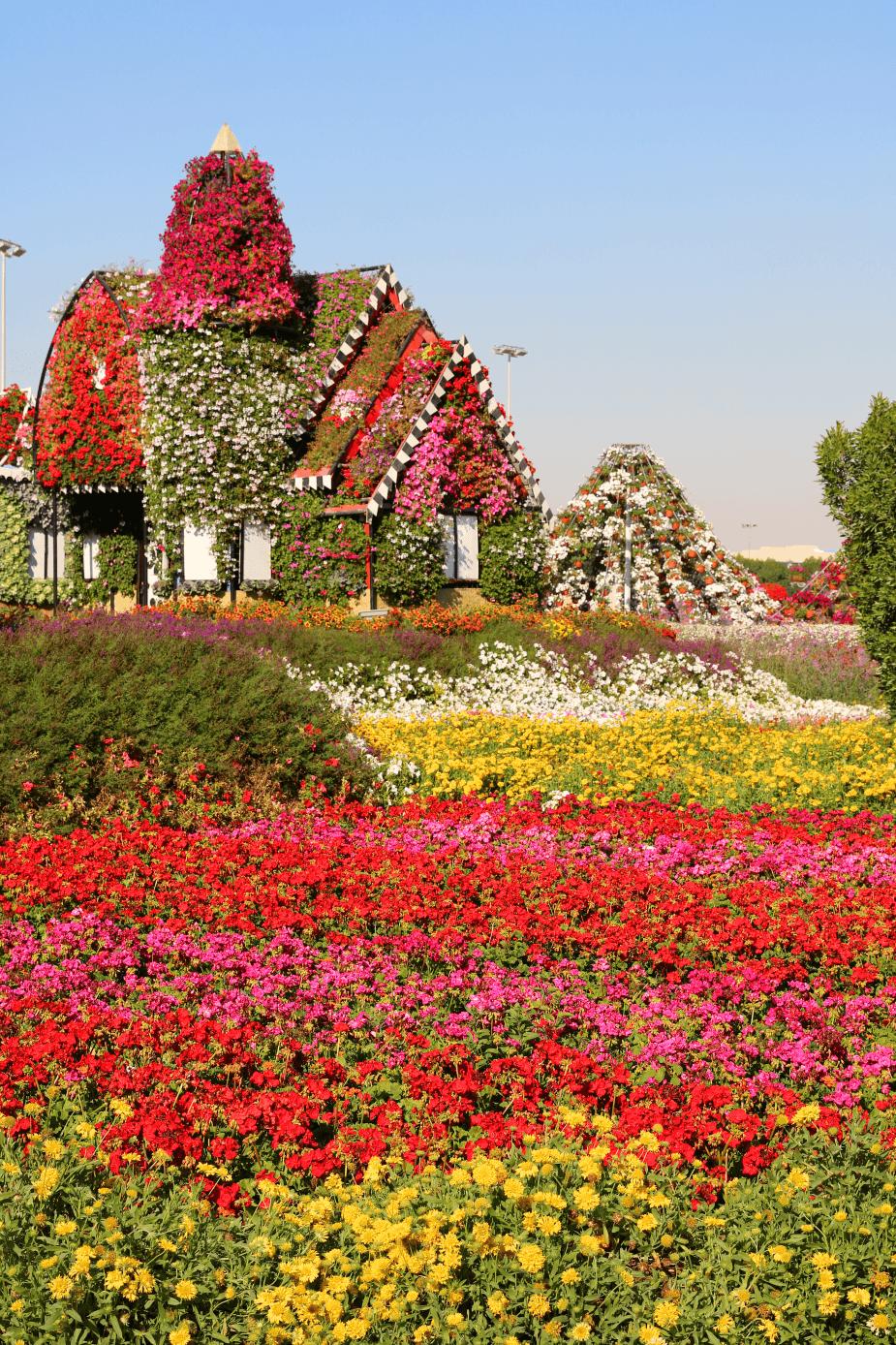 A desert oasis of 45 million flowers at Dubai Miracle
