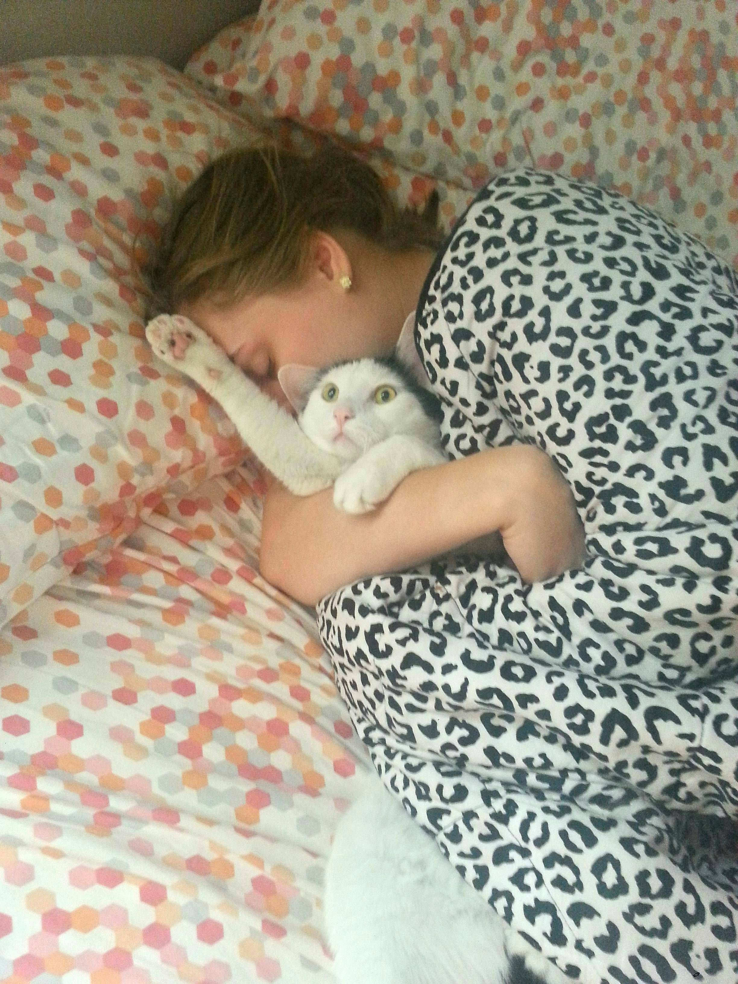 Psbattle Regretful Cat Held By Sleeping Girl Funny Cat Photos Funny Cat Pictures Baby Cats