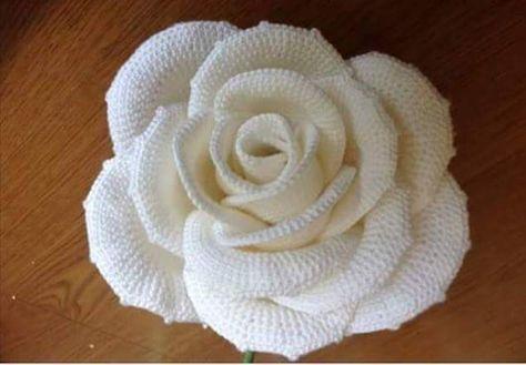 Splendida Rosa Alluncinetto Con Schema Il Blog Italiano Sullo